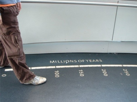 Walking one million years with one step at the American Museum of Natural History